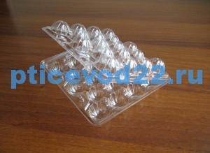 Упаковка для перепелиных яиц22
