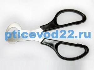 ножницы-1
