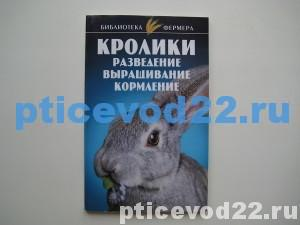 кролики1